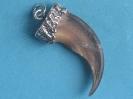 Braunbär(Grizzly)   kralle 1-6650