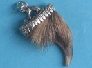 Braunbär(Grizzly)kralle 2-6686