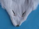 Fuchs-Maske Weiß-Fuchs