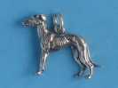 Windhund 6135