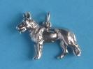 Schäferhund 6144