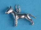 Bull Terrier 6130