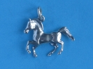 Pferd 6130