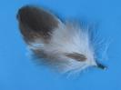 Adlerfeder 1-33